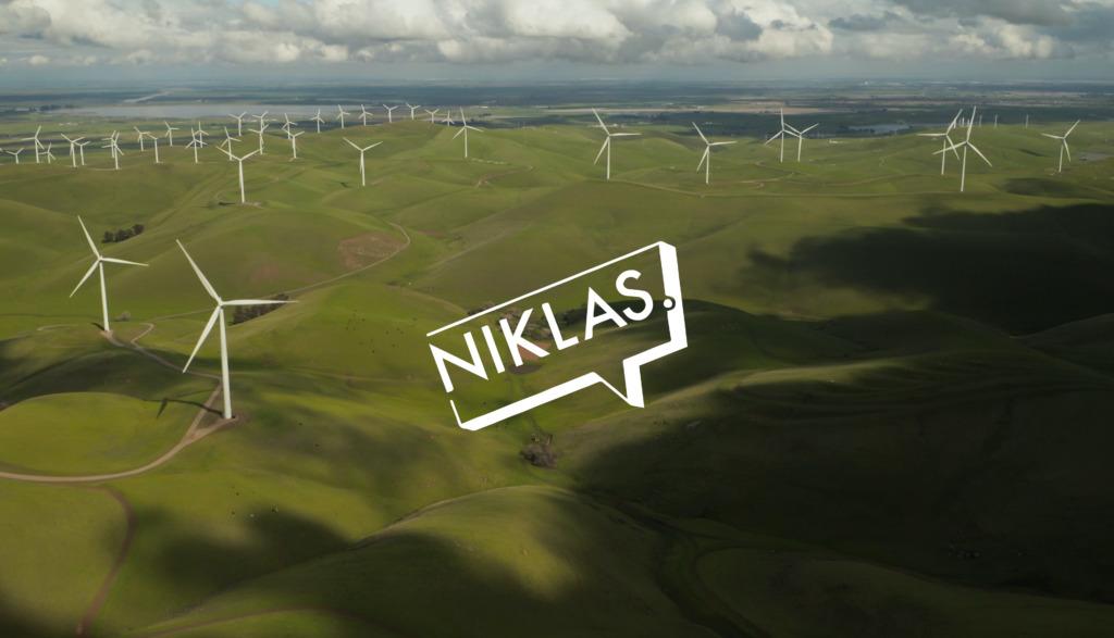 Niklas Nienass - Logo